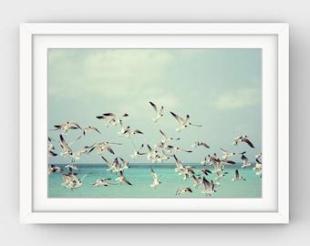 Beach Decor, Seagull Print, Ocean Print, Bird Photography, Flock of Seagulls, Seagull Photo, Flock of Birds, Ocean Art, Pastel Wall Art