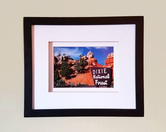 Dixie National Forest (Double Matted & Framed Photo)