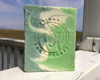 Soap - Eucalyptus Mint Soap