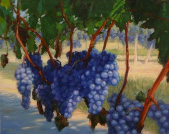 "Tuscan Grapevine Painting, 16x20"" original oil, Italian art, painting of grape vineyard, muscadine grapes, canvas art, vineyard painting"