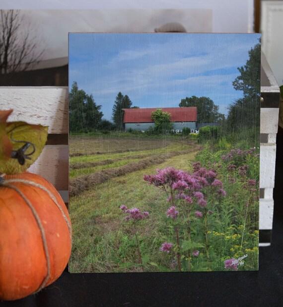 8 x 10 Original Photography on Wood - Shaw farm