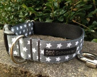 Schossier collar grey Star collar for dogs