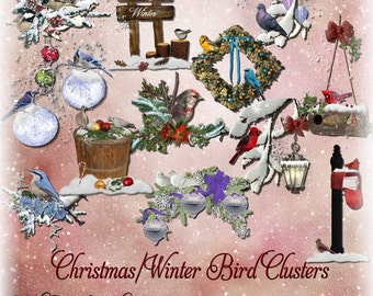 Christmas/Winter Bird Clusters
