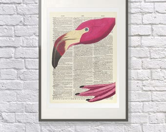 The Nosey Flamingo - Upcycled Vintage Dictionary Print - Surreal Flamingo Art Poster
