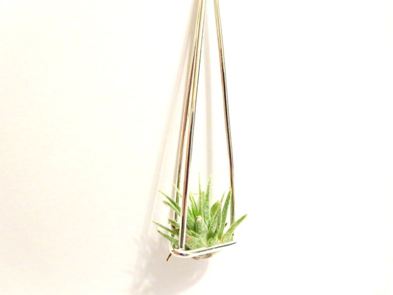 air plant necklace live plant necklace miniature terrarium