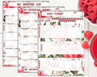 slimming world food diary, Printable, Red Colours, Rose, Food Diary, Diet Diary, Slimming World Food Planner, Print to fit your notebook