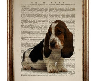 Basset Hound Dog, beautiful Art Print on Upcycled Dictionary Book page 8'' x 10'' inches