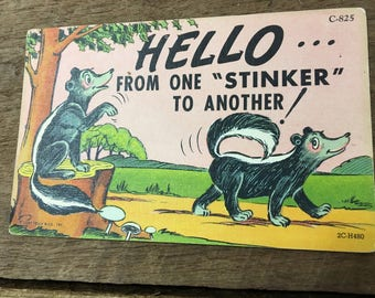 """Kitschy Skunk Vintage Postcard- Hello from one """"stinker"""" to another!"""