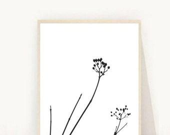 Minimalist Decor, Seed Head print, Plant Print, Botanical Print, Black And White Art, Printable Art, Digital Download, Wall Decor