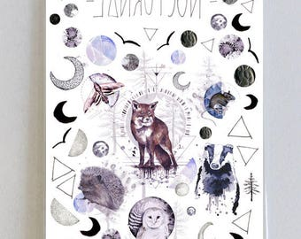 Nocturnal Temporary Tattoos