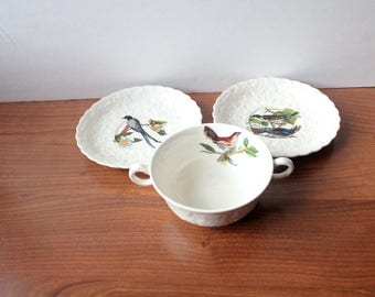 Vintage Birds of America Cup & Saucers