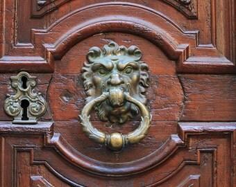 Paris France, wooden door, door knocker, lion door knocker, key hole, brass door knocker, oak door, french oak, Paris home decor, 16x24