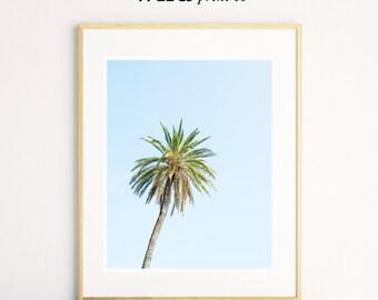Palm Tree Print, Tropical Wall Art, Hawaii, California, Beach House Decor, Palm Tree Photography, Printable Wall Art, Large Poster Art