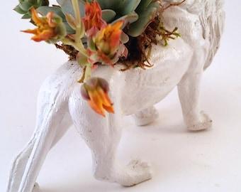 Lion Animal Planter + Succulent \\ Animal Planter \\ Desk Accessory \\ Dorm \\ Home Decor \\ Gift \\ Office Decor \\ Desk Plant