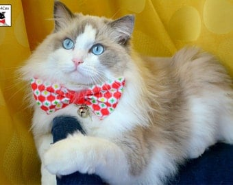 Christmas bow tie for cats - cute bow tie for large cats