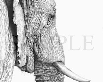 "Elephant print of ""Leaving"", by Martyn Fox."