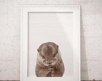 Otter Print, Nursery Animals, Nursery Animal Print, Nursery Decor, Baby Animal Print, Baby Nursery Art, Nursery Wall Art, Nursery Decor
