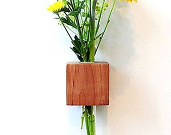 Magnetic vase Apple flower vase test tube vase