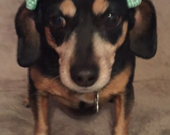 Cute Little Checker Bows for Pets or Babies! Happy St. Patrick's Day!