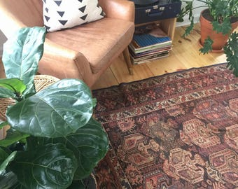 """10% OFF USE CODE SAVE10 4'2""""x5'2"""" Antique Persian Rug"""