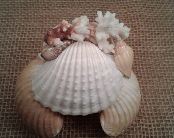 Sea Shell Hermit Crab House w/ Coral Top SHCH6