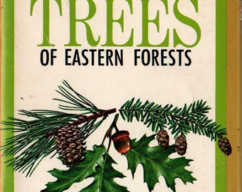 Important Trees of Eastern Forests - Rebecca Merrilees - 1968 - Vintage Reference Book
