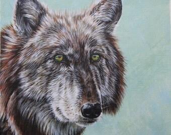 Wolf - Original Painting