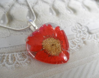 Red Daisy Pressed Flower Glass Heart Pendant-A Passionate Heart-Symbolizes Loyal Love-April's Birth Flower-Nature's Art-Gifts Under 25