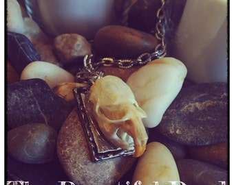 Vole Skull Necklace