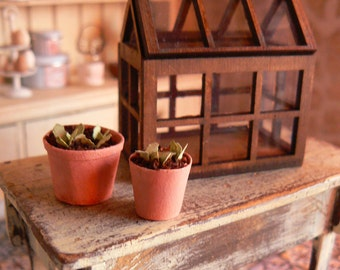 Greenhouse for Doll House - Miniatures - One inch scale