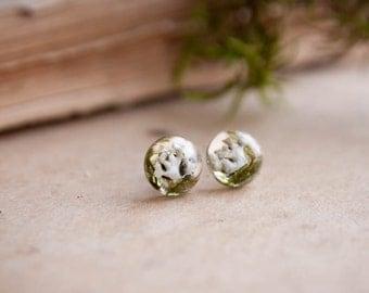 Tiny terrarium earrings | Forest plants terrarium | Nature earrings | Terrarium jewelry | Nature forest jewelry Moss Stud Earring