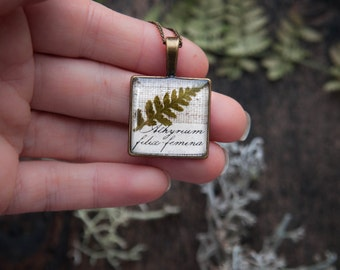 Real Fern Necklace - natural history theme - rustic wedding idea bridesmaid gift - cute woodland botanical jewelry for nature lovers