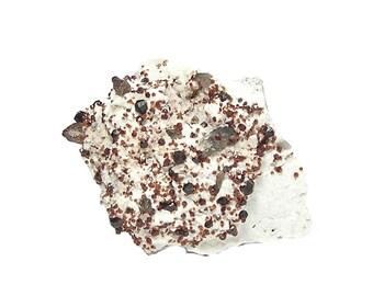 Spessartine Red Garnet Gemstone Crystals with Smoky Quartz on white feldspar matrix Mineral Specimen Earth Gem from an estate collection