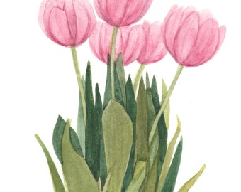Pink Tulip Floral Note Cards Set of Four Watercolor Painting Reproductions