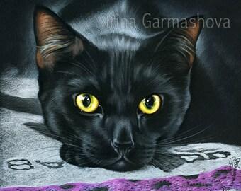 Black Cat Print Sunshine by Irina Garmashova