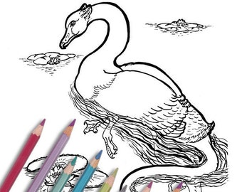 """Printable coloring page: """"Swan Griffin"""" Instant download - PDF - Black swan and jaguar griffin"""