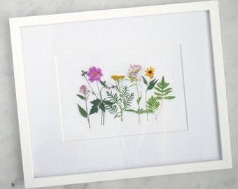 Wildflowers of summer, nature art ~ photography print ~ wall art ~ botanical print