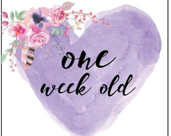 Little Girl Week/Monthly Cards (DIGITAL COPY)