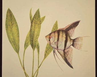 Beach House Wall Decor Tropical Fish Wall Art Aquarium Fish Print Aquatic Plant