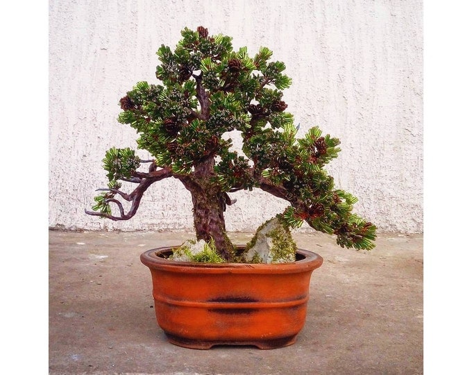 Beaded artificial wire wrapped bonsai tree - miniature tree - beaded sculpture - woody plant - copper tree of life - pine tree