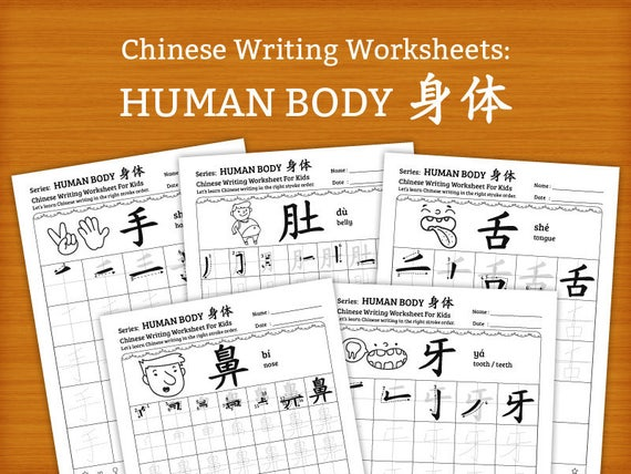 chinese writing worksheets for kids human body 16 pages. Black Bedroom Furniture Sets. Home Design Ideas