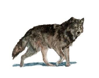 Watercolor Wolf Print, Wolf Art Print