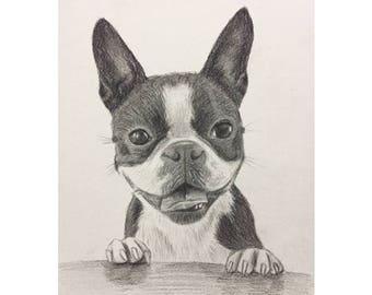 Custom Pencil Portrait, Pencil Portrait, Pencil Portrait Pet/dog, Custom Pencil painting, Original pencil portrait, Pencil portrait painting