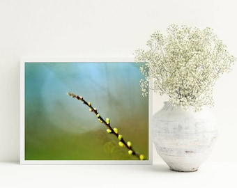 Blue green wall art Living room bedroom decor Botanical art Printable photography Spring poster A3 A4 Gift for mother Bright pictures Aqua