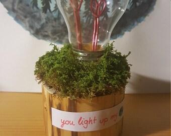Light bulb art handmade