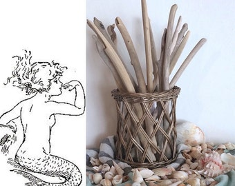 14 Long Lovely Bohemian SEA Style Driftwood Sticks- For Sea Washed Driftwood Branches Home Decor Bulk Craft Beach Cottage Home