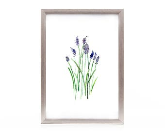 floral watercolor print, nature wall decor, lavender herb watercolor wall art, gift under 25, gift for her, original art print, lavender art