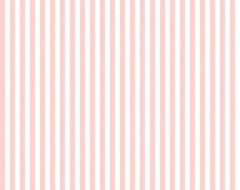 "1/2 Yard 1/4"" Stripe by Riley Blake Designs-C555 Baby Pink"