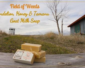 Field of Weeds   Dandelion & Clover Honey Goat Milk Soap