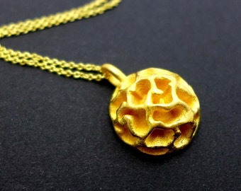 Fossil Acritarch Cymatiosphaera Pendant - Paleontology - Science Jewelry in gold-plated steel,bronze, brass & silver